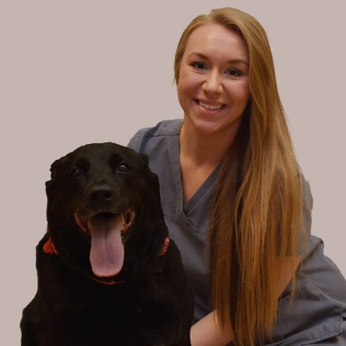 Emily, Veterinary Assistant