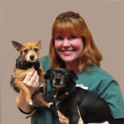 Sarah, Certified Veterinary Technician, Practice Manager