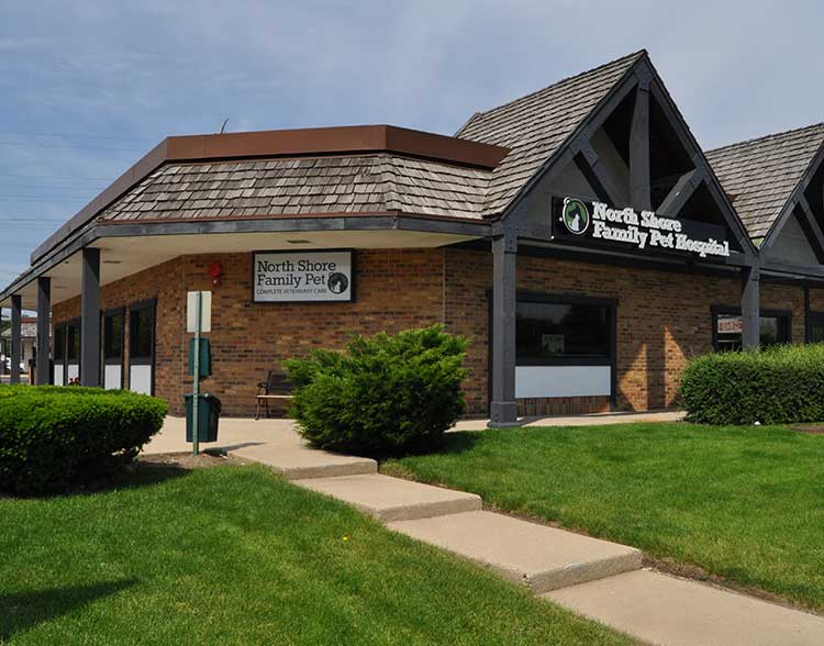 Animal Hospital Near Glencoe IL