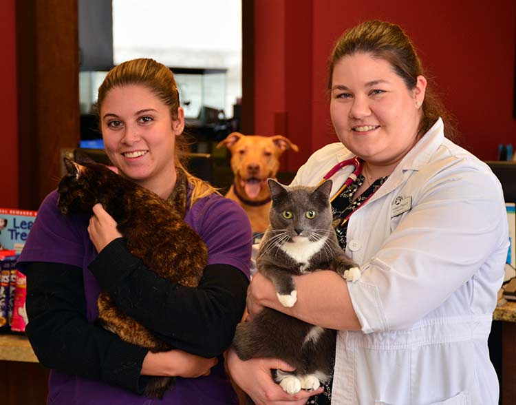 Requerst Appointment at North Shore Family Pet